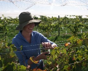 Kingsdale Wines - Tourism Brisbane