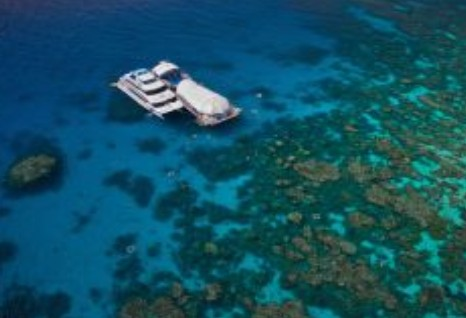 Great Adventures Reef and Green Island Cruises - Tourism Brisbane