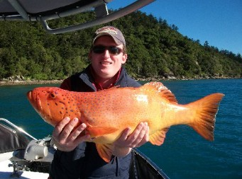 Gone Fishing by Coral Sea Fishing Charters Airlie Beach - Tourism Brisbane