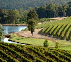 Brookhampton Estate Vineyard - Tourism Brisbane