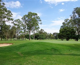 Singleton Golf Club - Tourism Brisbane