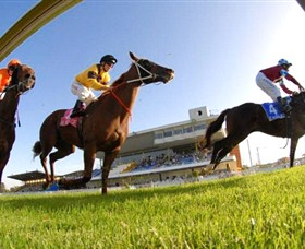 Wyong Race Club - Tourism Brisbane