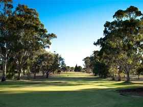 Loxton Golf Club - Tourism Brisbane