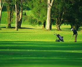 Foster Golf Club - Tourism Brisbane