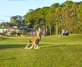 Sanctuary Cove Golf and Country Club - Tourism Brisbane