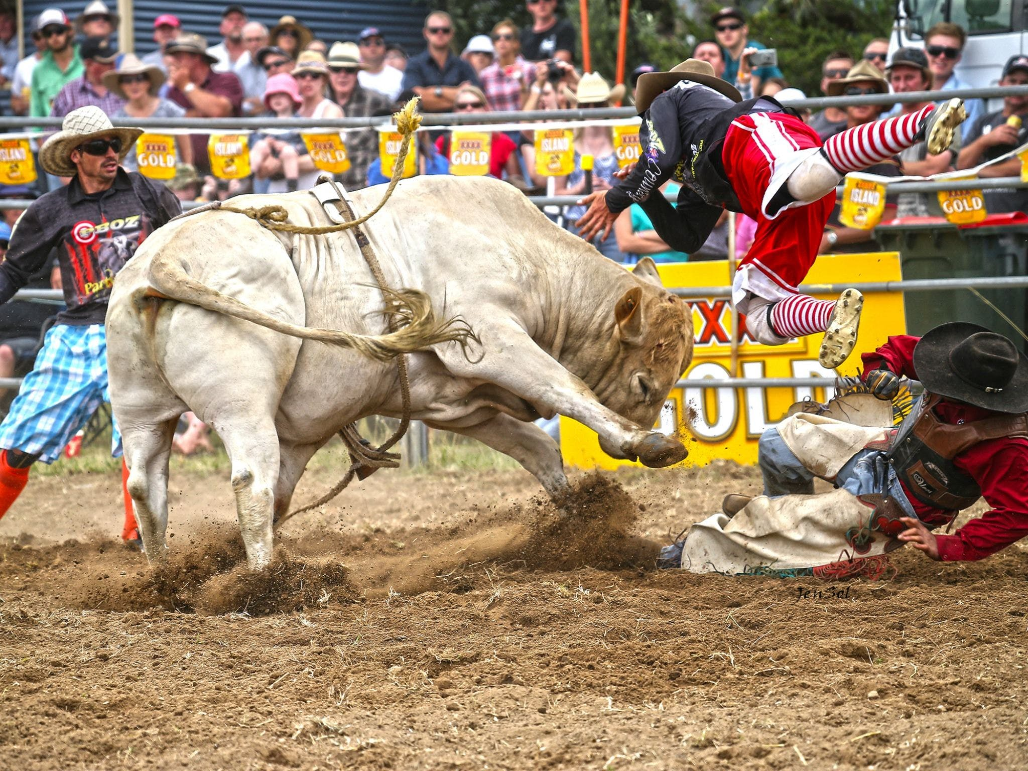 Jindabyne's Man From Snowy River Rodeo - Tourism Brisbane