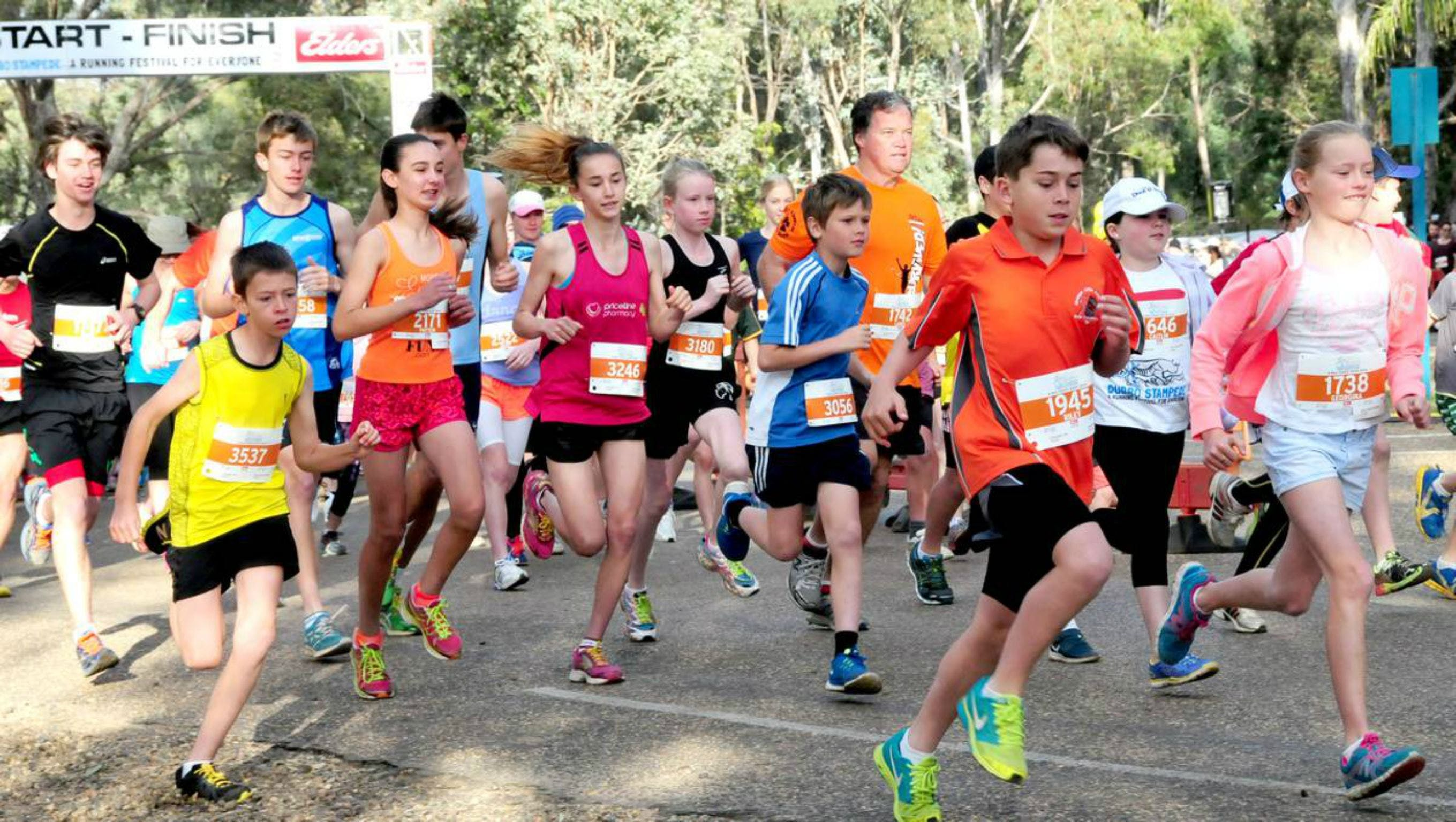 MAAS Group Dubbo Stampede Running Festival - Tourism Brisbane