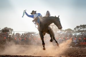 Rodeo by the Sea - Streaky Bay - Tourism Brisbane