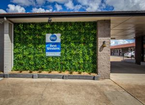 Best Western Endeavour Motel - Tourism Brisbane