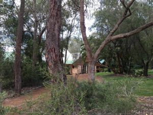Country Retreat on 1 acre with pool hot tub surrounded by trees - Tourism Brisbane